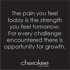 Image result for cherokee proverbs