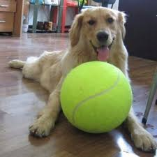 <b>24cm Giant Tennis Ball</b> For Pet Chew Toy Big Inflatable Tennis Ball ...