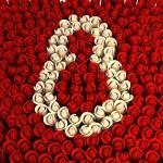 بكل الحب والتقدير  اهنئ  كل امرأة Images?q=tbn:ANd9GcQQzUyBzkgYidVSCSsZKoBGwbb4WpggWgtJtPxuWaqOQW2GEdgjhA