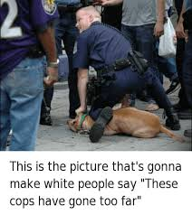 6 Funny Fuck The Police Memes of 2015 - Doublie via Relatably.com