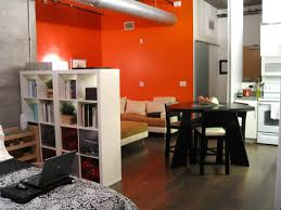 One Bedroom Apartments Decorating 1 Bedroom Apartment Ideas For Nice Room Sheilanarusawa Home