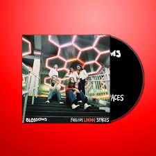 <b>Foolish Loving</b> Spaces Signed CD