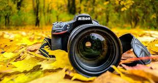 Обзор универсального зум-<b>объектива Nikon</b> AF-S <b>Nikkor</b> 24 ...