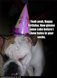 diselfcore: funny happy birthday quotes via Relatably.com
