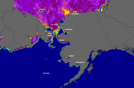 Bering Sea Ice Conditions: <b>Winter 2019</b> | International Arctic ...