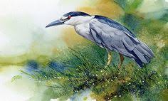Image result for waterbird art gallery