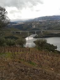 Balsemão River