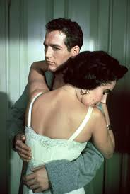 a cat on hot tin roofcan cats get pink eye elizabeth taylor and paul newman in cat on a hot tin roof directed by richard brooks