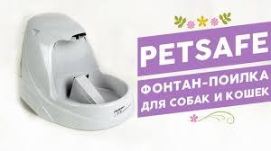 Фонтан-<b>поилка</b> для собак и кошек <b>Pet Safe Drinkwell</b> - YouTube