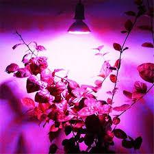 <b>E27</b> 10W <b>LED Plant Grow</b> Light 106 <b>LED</b> Beads Full Spectrum ...