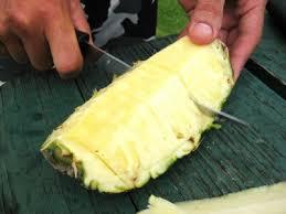 food in hawaii   a photo essay after a waimea canyon hike in kauai some fresh pineapple photo by sheila scarborough