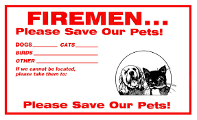 do you have one on your windows it might save your pet s life petmd