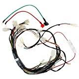 51hMDEwacWL._AC_UL160_SR160160_ amazon com wire harness 110 cc 125cc taotao atvs go karts dirt on 110cc dirt bike with headlight wiring