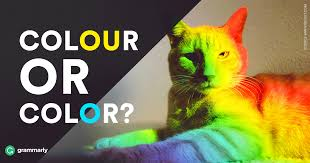 <b>Colour</b> or <b>Color</b>—Which Is Correct? | Grammarly