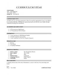 resume template wordpress theme broadcast news script example 89 excellent resume builder and template