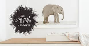 The <b>Animal</b> Print Shop — Sharon Montrose   Online <b>Animal Art</b> Gallery