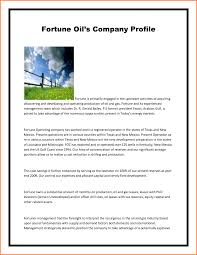 company profile example pdf sample memo format png xianning it