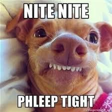 goodnight imgur, thanks for making me sleep deprived - Imgur via Relatably.com