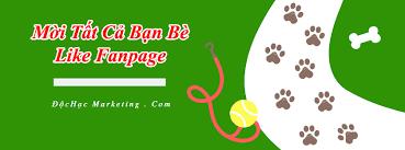 Top 3 cách mời tất cả bạn bè like – thích fanpage Facebook - Độc ...