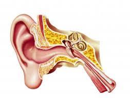 Znalezione obrazy dla zapytania hearing defect
