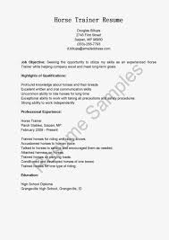 resume cover letter sample for s resume samples resume cover letter sample for s letter resume professional format template example resume cover letter sample
