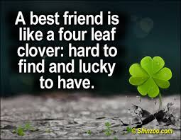 Cute Best Friend Quotes | Shinzoo Quotes