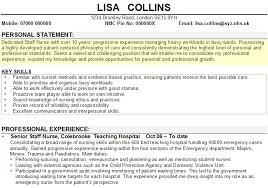 nursing personal statement template   best template collectionnursing personal statement template mtiqios