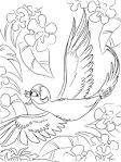 Раскраска рио для девочек