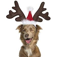 Outward Hound Kyjen 30033 <b>Dog</b> Elf Hat Holiday and <b>Christmas Pet</b> ...