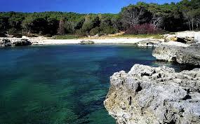 Porto Selvaggio Images?q=tbn:ANd9GcQTD1VnGOdd92czd7aHNs38gZTlBwZyGTkeNl8vX79gzL6bT0ja