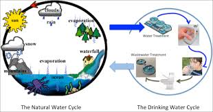 "the ""drinking water cycle"" is right   safedrinkingwaterdotcomthe ""drinking water cycle"" is right"