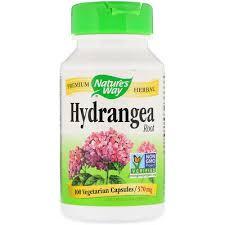 Nature's Way, <b>Hydrangea Root</b>, 370 <b>mg</b>, 100 Vegetarian Capsules ...