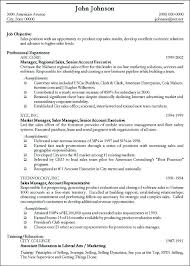 professional resume how to resume examples specially for example of professional resume professional resume formatting