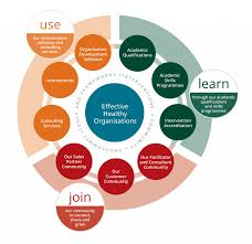 about worldsview academy for organisational change worldsview academy