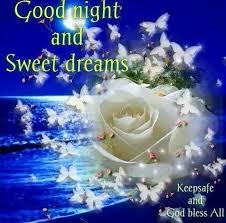 good night sleep and sisters on pinterest adi nag sleeping porch