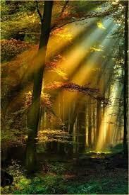 """Résultat de recherche d'images pour """"centerblog belles images de rayon de soleil"""""""