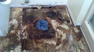 toilet subfloor repair