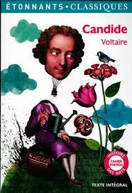 Amazon fr   Candide   Voltaire  Elise Sultan  Jean Philippe Marty