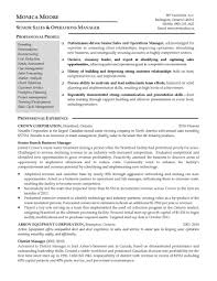 breathtaking marketing executive resume samples brefash resume sample marketing marketing executive resume examples yazhco marketing executive resume sample doc marketing manager resume