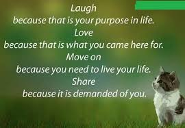 Image result for beautiful quotes on life