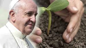 Image result for Pope Francis  climate change