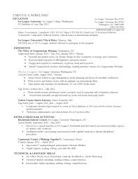 sample chronological resume format 3 format of chronological resume