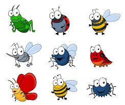 Resultado de imagen de insectos