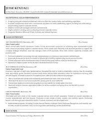Shop assishggay altinmarkam com   Article Home Sample Sales Team Leader Resume Sample Sales