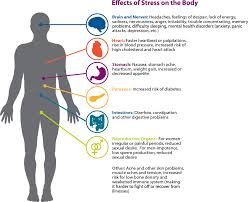 stress coping everyday problems mental health america tips for reducing or controlling stress