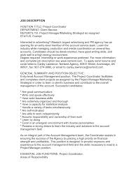 it project manager resume resume project manager  seangarrette coresume executive marketing strategist as assigned entry level project manager resume for job description   it project manager resume