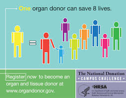 the nurse s role in organ donation notes from the nurses station the nurse s role in organ donation