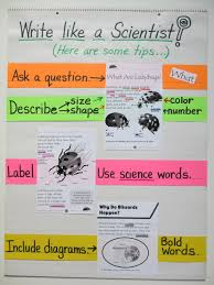 winding it down while ratcheting it up scientist anchor chart science vocabulary and graphic organizers student aid provide students information that is large