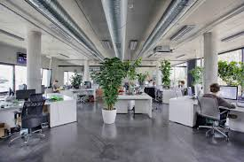 Plants Give Our Industrial Office A Cozy Feel  Office Pinterest Plants Industrial And Colors