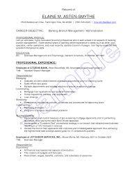 Sample Resume  Sle Resume Good Singapore Retail Banking